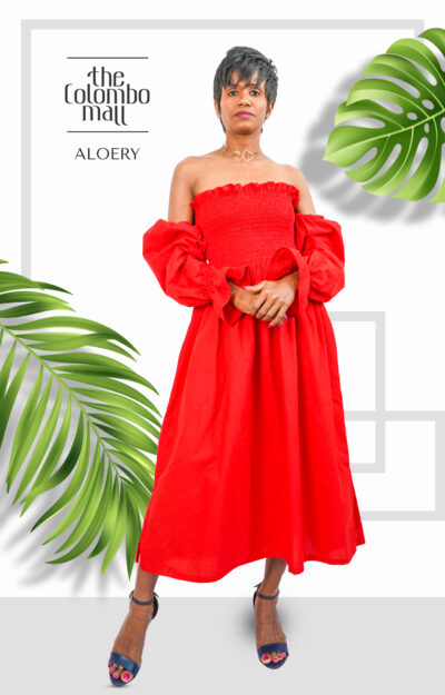 Off Shoulder Long Sleeve Party Frock